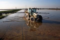lavorazione-riso-risaia-acqua-2