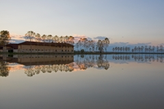 risaia-allagata-dop-baraggia